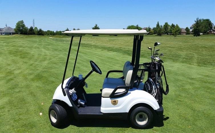Best 6 volt golf cart batteries