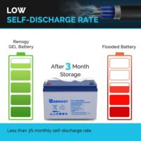Renogy Deep Cycle Hybrid Gel 12 Volt 100Ah Battery-3