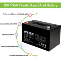 Weize 12V 100AH Deep Cycle AGM SLA VRLA Battery-2
