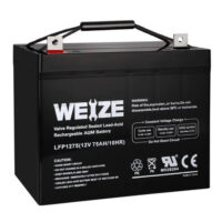 Weize 12V 75AH Deep Cycle Battery-1