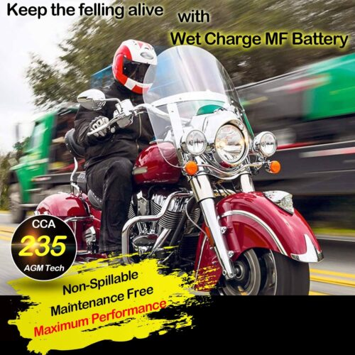 Weize YTX14 BS ATV Battery High Performance-5